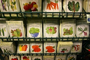 Soaring Food Prices Prompt Renewed Interest In Gardening
