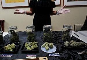 Flushing Votes on Medical Marijuana