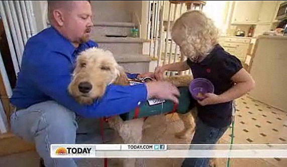 Girl's best friend is a golden doodle that carries her oxygen tank