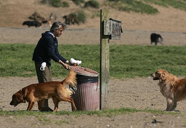 San Francisco To Convert Dog Waste Into Alternative Energy