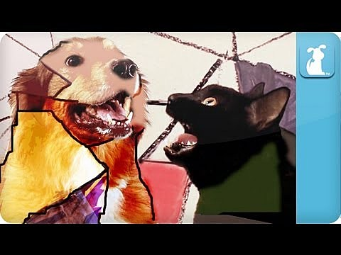 Dogtye