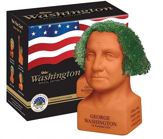 Chia Geo Washington