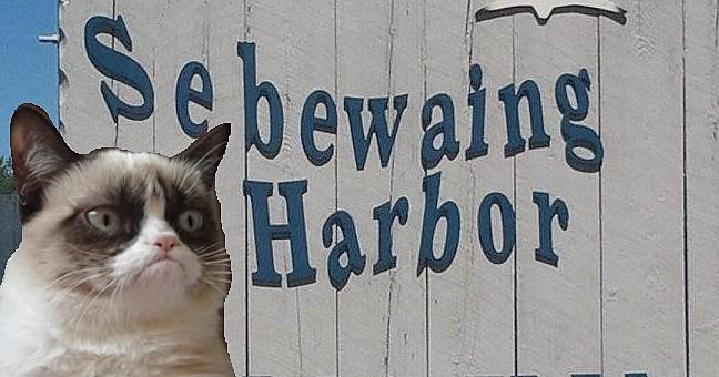 Sebewaing Harbor via Facebook